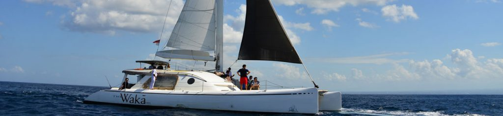 Waka Catamaran Day Cruise