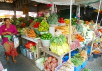 Lovina Dolphin Tours Candi Kuning Fruit Market