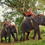 bali-elephant-safari-ride