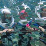 Bali Lembongan Watersport